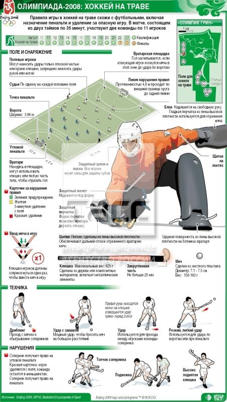 Хоккей с мячом инфографика